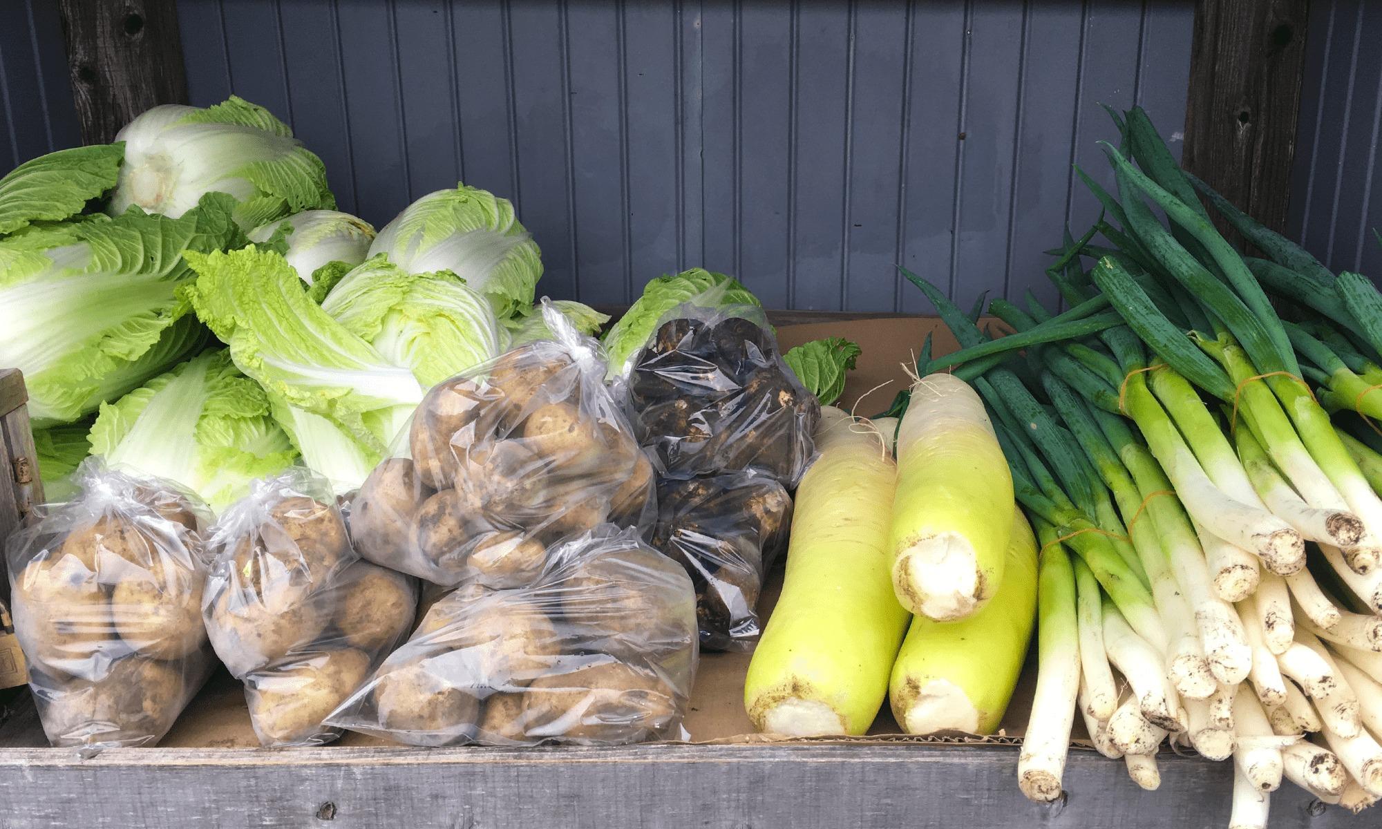 今日は何かな?「野菜無人販売」