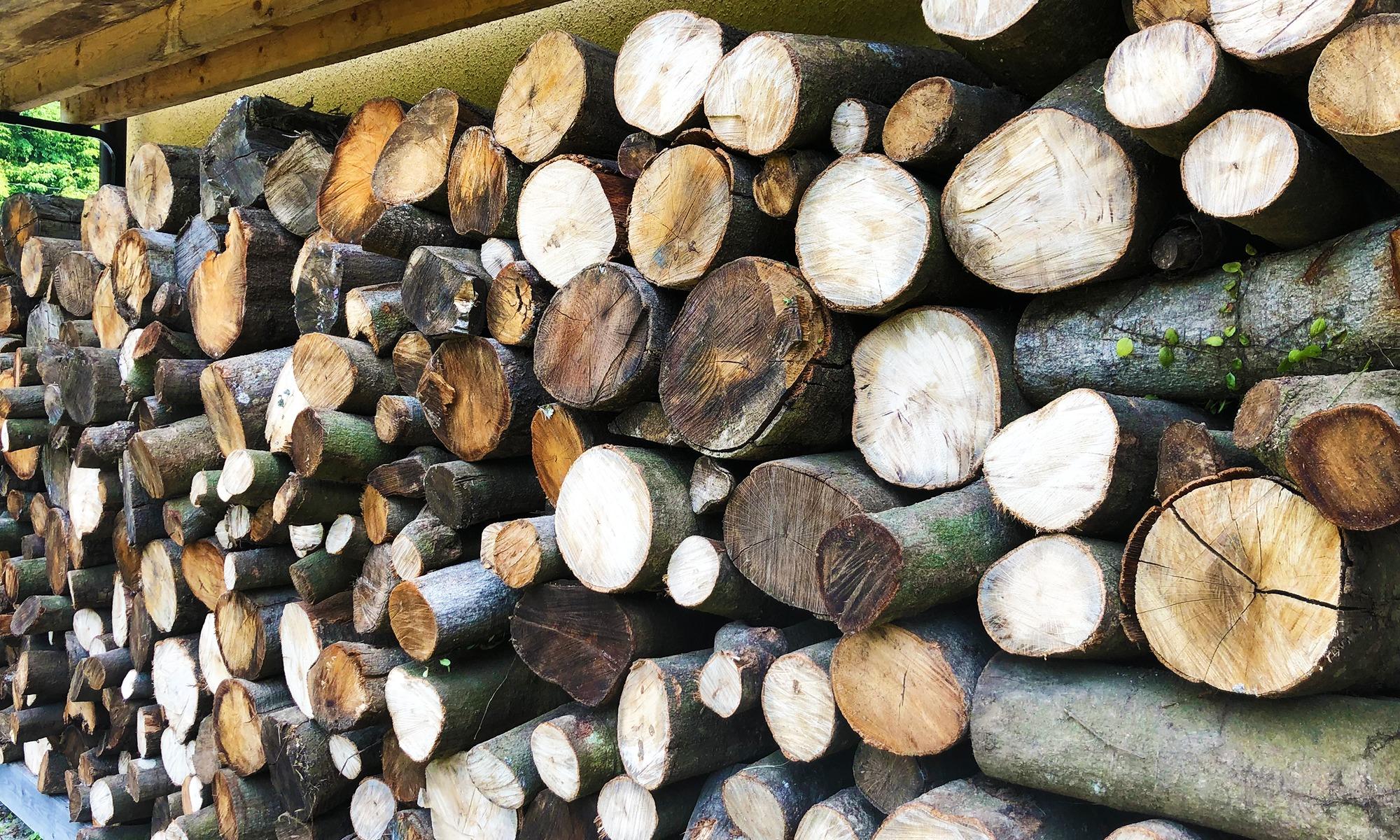 冬が待ち遠しい「薪割り」